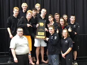 Hawk swimmers tie for 3rd at state, win coin flip for trophy