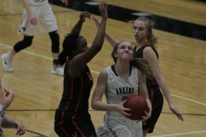 Valley's Young, Dowling's Clark to provide huge tests for Jaguars, Hawkettes