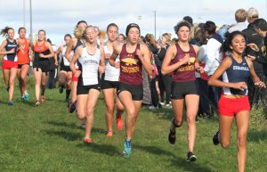 Jaguars, Hawkettes run well at conference, gear up for regionals